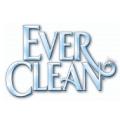 ever-clean-logo