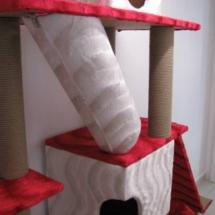 kedi-pansiyonu-kaliteli